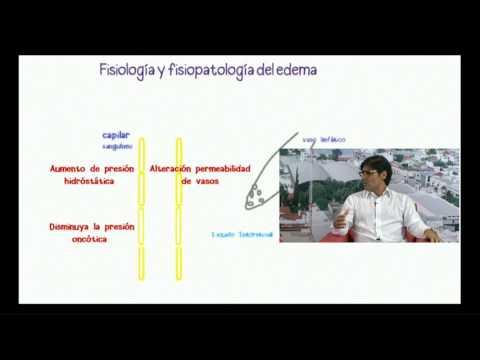 Acacia proprietà medicinali thrombophlebitis