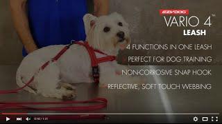 How To Use A Multi-function Dog Leash - Vario 4 Lite EzyDog Leash
