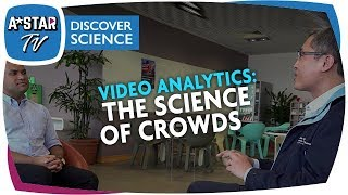How does video analytics help to understand and manage crowds?