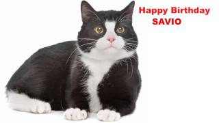 Savio  Cats Gatos - Happy Birthday