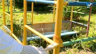 Владимир Владимирович красил сегодня скамеечки в новгородском детском доме