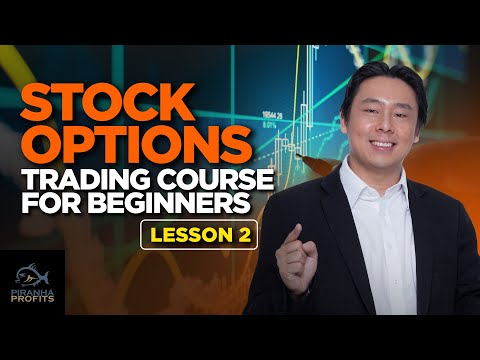 Stock Options Trading Course for Beginners Lesson 1 (Part 2 of 2)