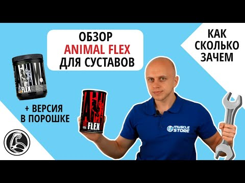 Обзор Animal Flex состав, как принимать? + Animal Flex powder (в порошке)
