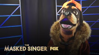Who Is Rottweiler? | Season 2 | THE MASKED SINGER
