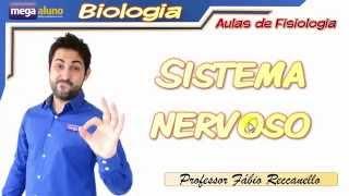 Sistema Nervoso- Aula completa (divisão, encéfalo, medula,  arco-reflexo...)