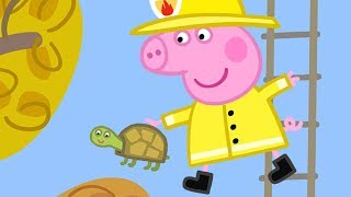 Peppa Pig Official Channel | Peppa Pig Saves Mr Tiddles!