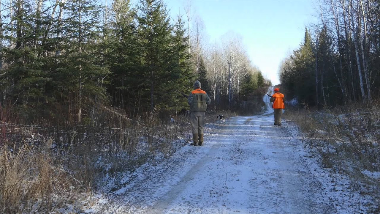 Grouse Hunting With Kap River