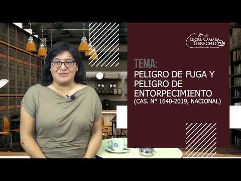 PELIGRO DE FUGA Y PELIGRO DE ENTORPECIMIENTO - Luces Cámara Derecho 162