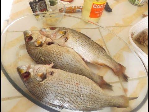 Simple Baked Fish Recipe — Kadirecipes