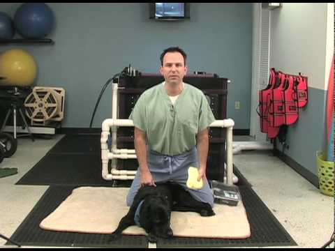 Moist Heat Therapy - Video
