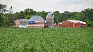 Новые дотации фермерам: как торговая война с Китаем может повлиять на настроения избирателей в США