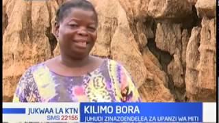 Kilimo bora: Juhudi za upanzi wa miti