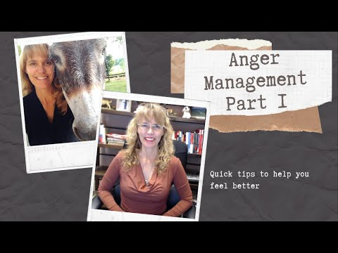Anger Management Part 1 | Counselor Toolbox Podcast with Dr. Dawn-Elise Snipes