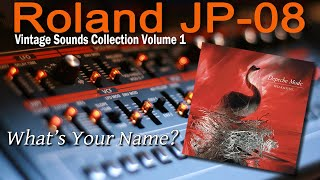 Roland (Boutique) JP-08 Demo Depeche Mode What's Your Name?