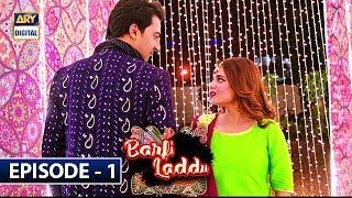 Barfi Laddu Episode 1 | 6th June 2019 | ARY Digital Drama