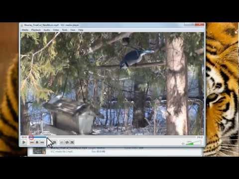 VLC Media Player 64 bit tutorial