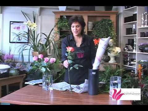 Tatiana Tarasova diyeta recipe