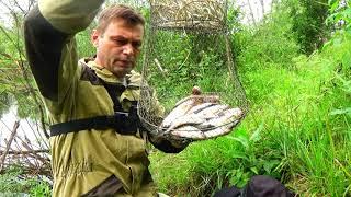 Фион свердловская область отчет о рыбалке