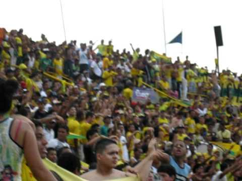 """""""Quien manda soy yo"""" Barra: Rebelión Auriverde Norte • Club: Real Cartagena"""