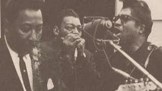 Little Walter-Mean Old World