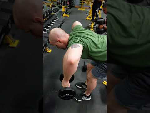 Dumbbell Rear Delt Row