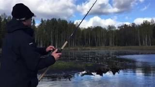Рыбалка озеро вельё новгородская область