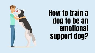 How to Train a Dog to be an Emotional Support Dog?