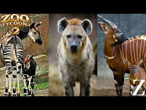 Download Our Zoo Season 5 Episodes 10 Mp4 & 3gp | NetNaija