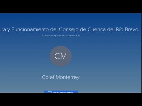 Estructura y funcionamiento del Consejo de Cuenca del Río Bravo