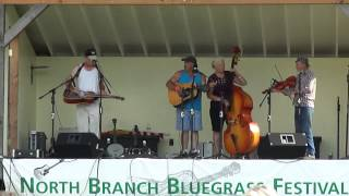 Wasn't That A Mighty Storm Lulu and the Shoemakers at The North Branch Bluegrass Festival 9 1 12