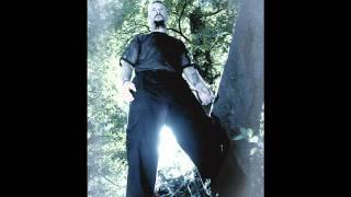 Ancestrum - The Stallion (Bathory cover)