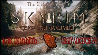 Skyrim Special Edition. Гайд по сбору Лососевой икры и быстрый способ прокачать алхимию