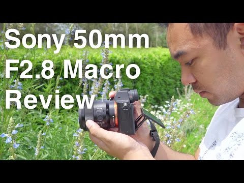 Sony 50mm F2.8 Macro FE Lens Review | John Sison