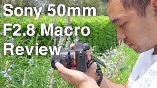 Sony 50mm F2.8 Macro FE Lens Review | John Sison
