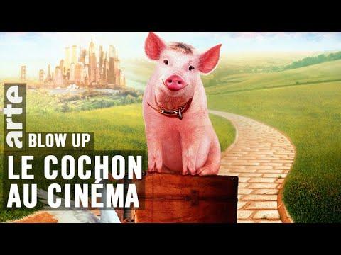 Le Cochon au cinéma - Blow Up - ARTE