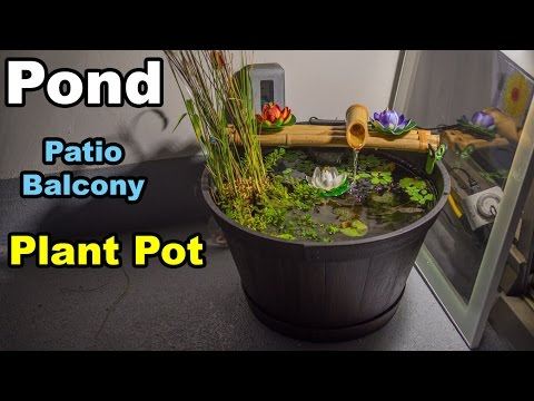 Pond in planter pot balcony patio condo apartment