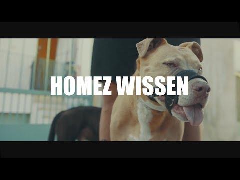 Cashmo - Homez Wissen Video