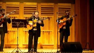 preview picture of video 'Guitarra Porá (parte 1 de 4)'