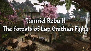 Tamriel Rebuilt - The Forests of Lan Orethan Showcase