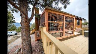Cat Enclosure Build Colorado With Cat Topia