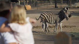 Taronga Western Plains Zoo is Reopening! Here's what to Expect.