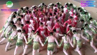 2011 舞頌天地情 印尼碧草新加坡晨曦青年團-世界一家 0817