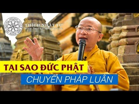 Tại sao Đức Phật chuyển pháp luân (01/03/2014) - Thích Nhật Từ