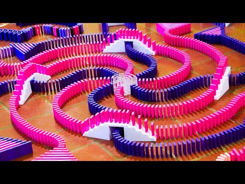 Watch 23,000 Dominos Fall in Less Than a Minute