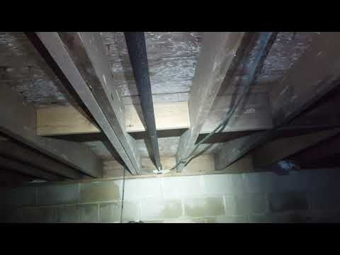 This homeowner in Sea Girt, NJ thought he smelled mold in his crawl space and noticed that the dirt floor seemed wet. We equipped our personal protective equipment and began inspecting.