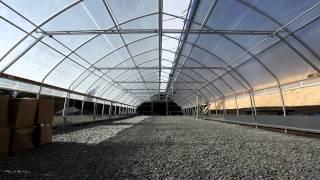 Greenhouse h264