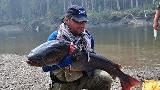 Рыбалка на уде в хабаровском крае