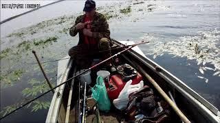 Рыбалка летом на ильмень озере
