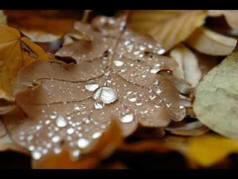 Мелодия дождя - Бетховен