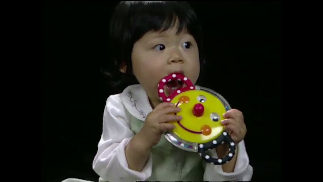 Baby Einstein: Baby DaVinci, Part 8